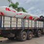 Exportación Plantor a Brasil